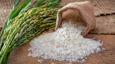Photo of سال 2020 میں چاول کی ایکسپور ٹ16 فیصد کم رہی