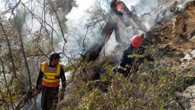 Photo of ڈیرہ اسماعیل خان:چلغوزے اور زیتون کے باغات میں آگ