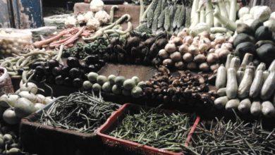 Photo of انسانی فضلے سے سبزیا ں اگانے کے خلاف درخواست کی سندھ ہائی کورٹ میں سماعت